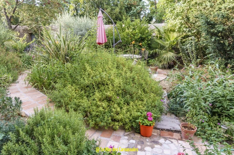 jardin_0059